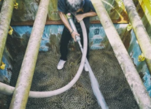 Man Cleaning Cooling Tower from Inside